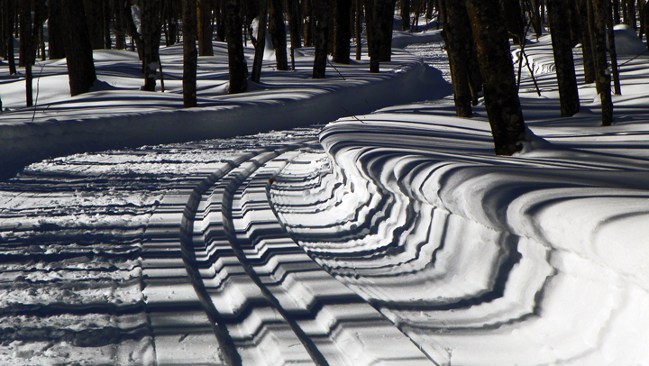 Late afternoon shadows create geometrical patterns that highlight changes in topography.