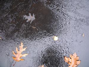 Rain Driveway GEDC1724cbl
